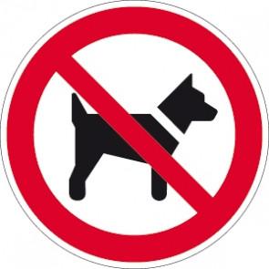 Verbotsschild Hunde verboten